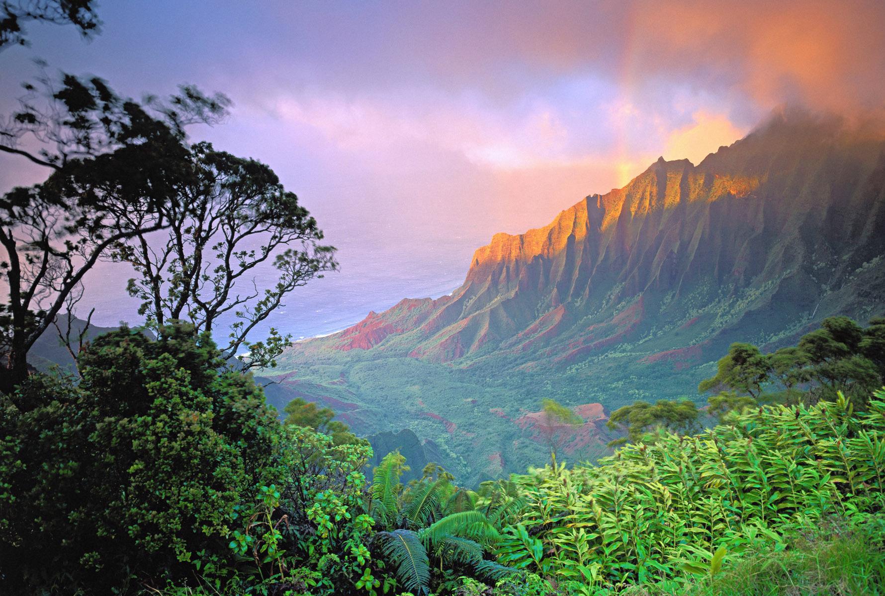 Aloha Week  Big Island